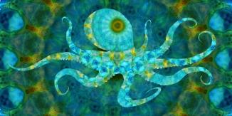 Mandala Octopus